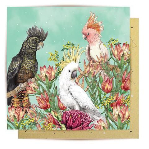 La La Land Greeting Card - Cockatoos of Australia