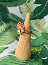Load image into Gallery viewer, California Sea Shell Ring Size 6