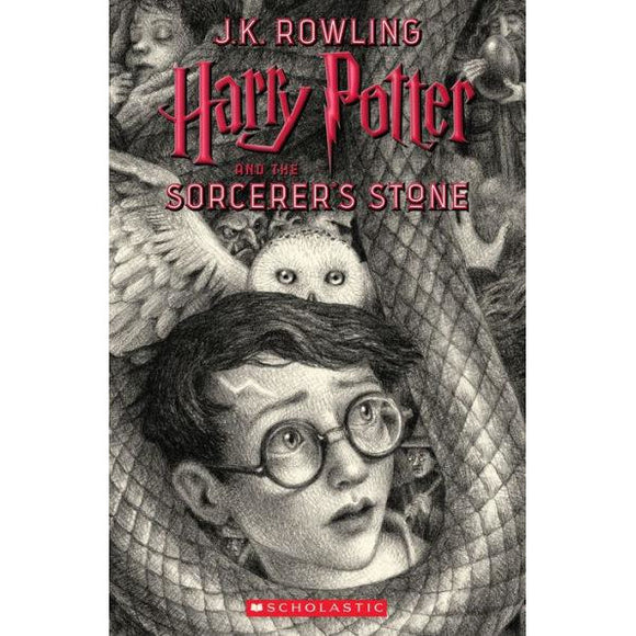 Harry Potter and the Sorcerer's Stone (Harry Potter Series Book #1)