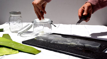 How to extract the aloe vera gel