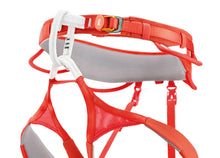 Load image into Gallery viewer, Petzl Hirundos Harness
