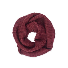 Load image into Gallery viewer, Pistil Zita Infinity Scarf
