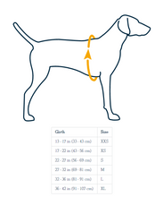 Load image into Gallery viewer, Ruffwear Vert Jacket