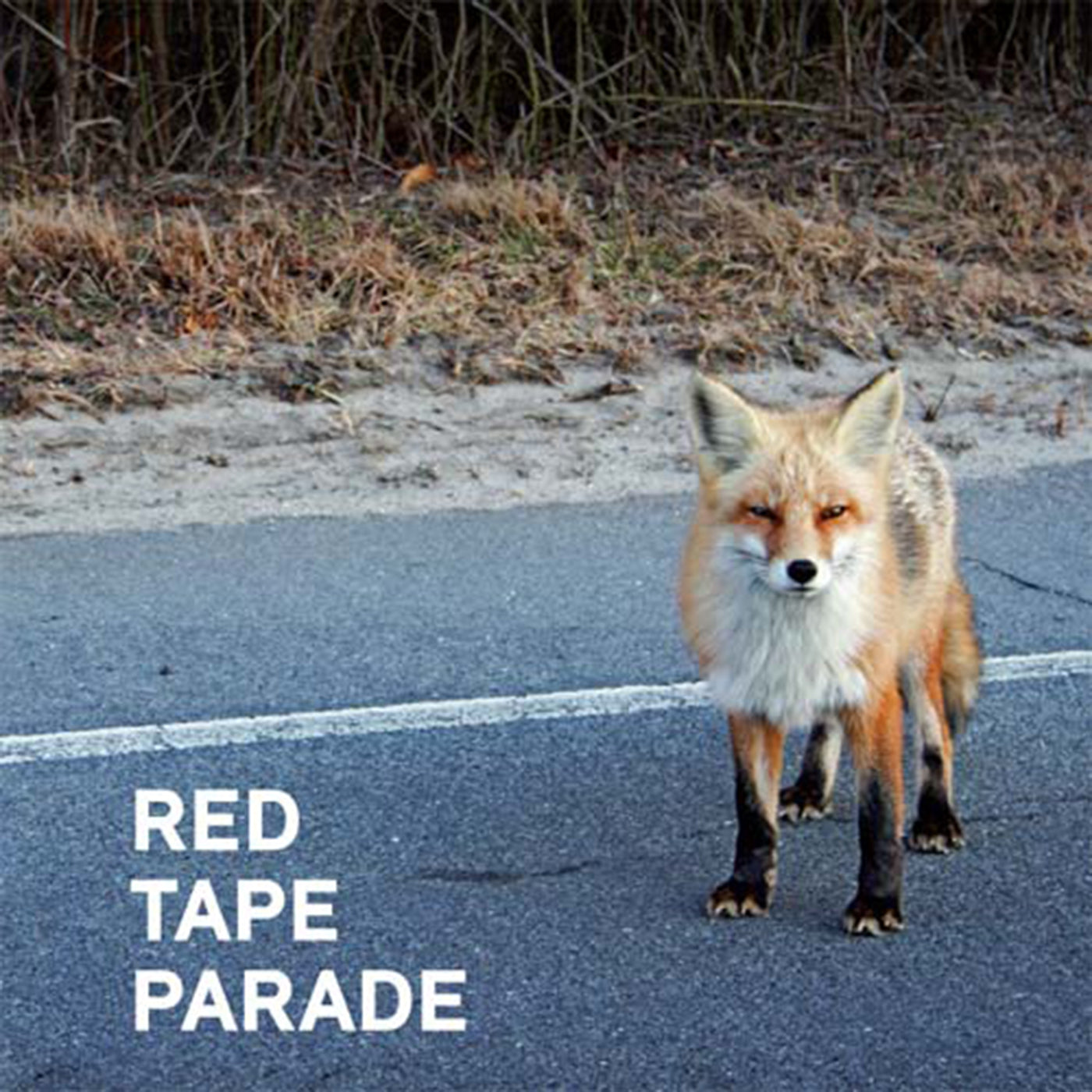 "RED TAPE PARADE ""S/T"""