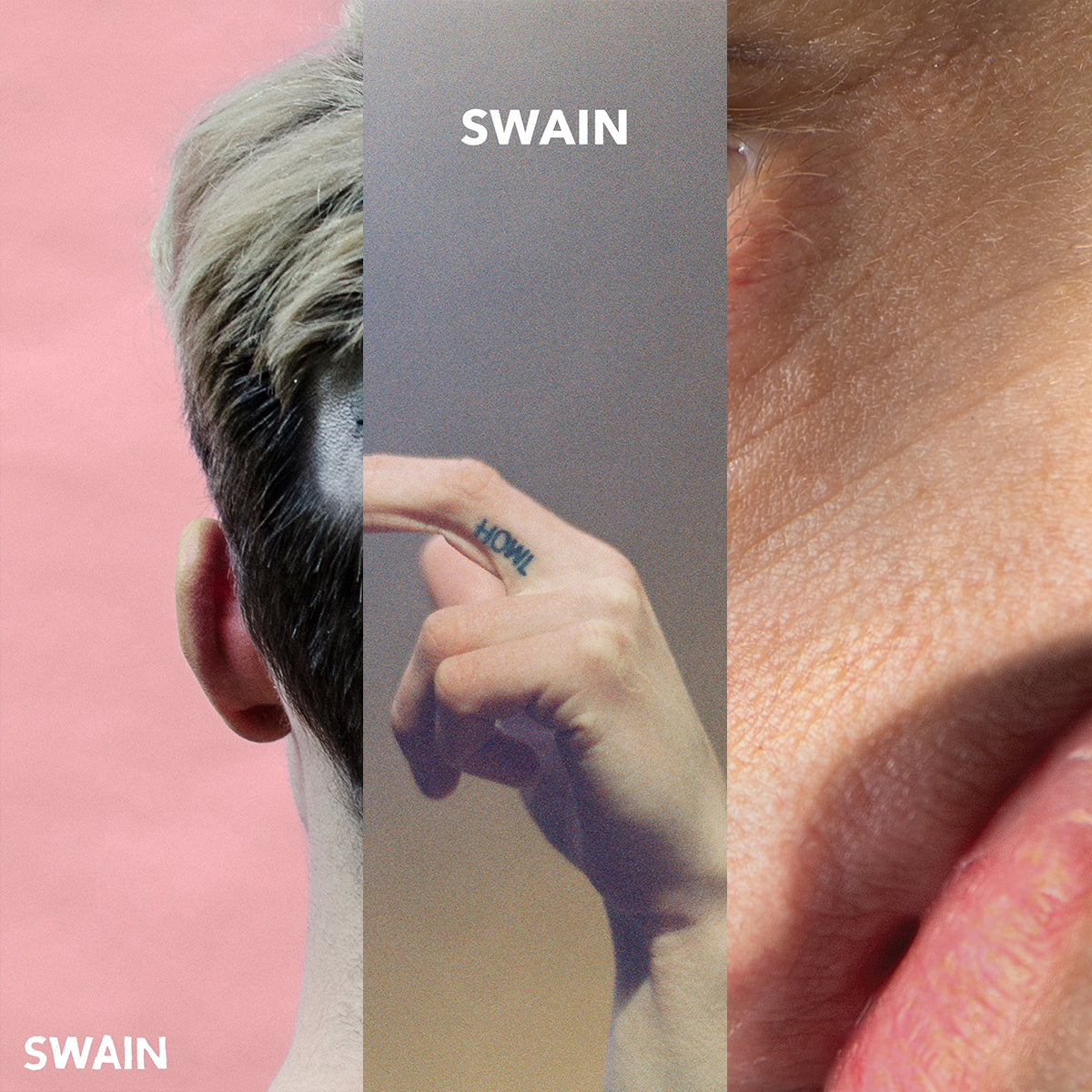 "SWAIN ""Discography"" Tape Bundle"