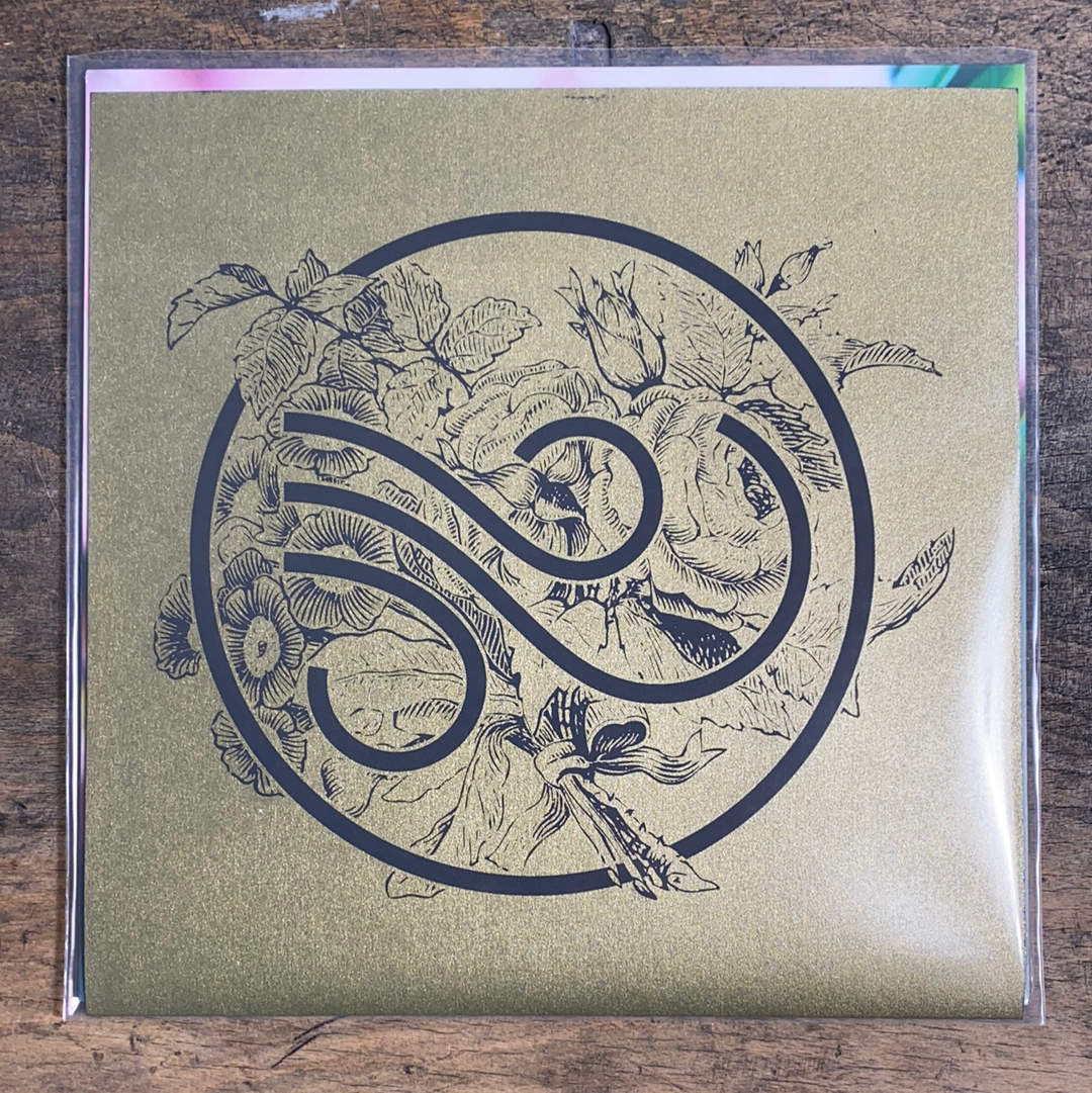 "RARITY: TRADE WIND ""You Make Everything Disappear"" LP (Screenprinted Cover)"