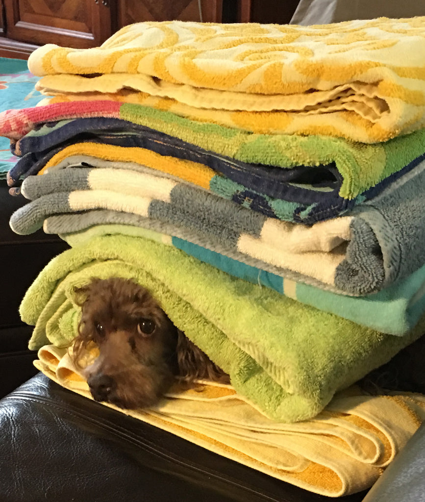 Towels Of All Colors and Materials