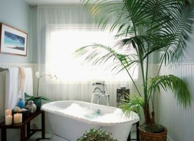 tranquil bathroom with freestanding bathtub and palm tree... Bathroom Style Trends: Bathroom Plant Ideas from Bathroom Bliss by Rotator Rod