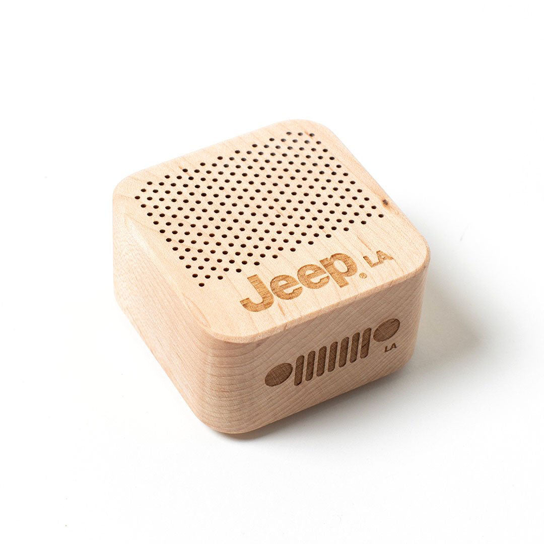 Mini Two-Way Speaker