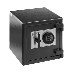DOMINATOR HS SERIES HOME SAFE HS-1