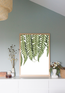 Fern on White Print A3
