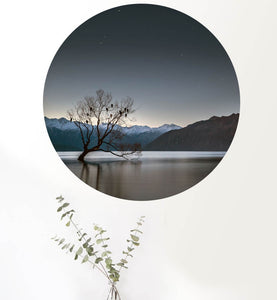 Wanaka Tree Art Dot