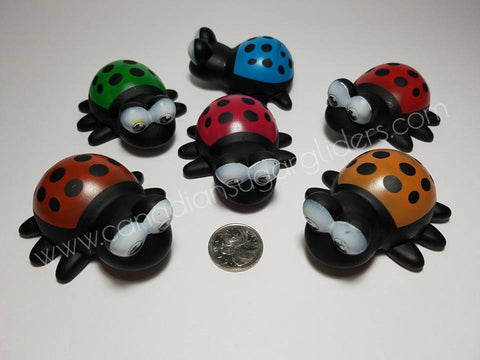 "Animal Characters Ladybugs 2.5"" - Canadian Sugar Gliders"