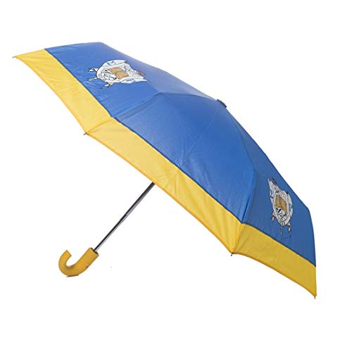 Sigma Gamma Rho Sorority Mini Hurricane Umbrella