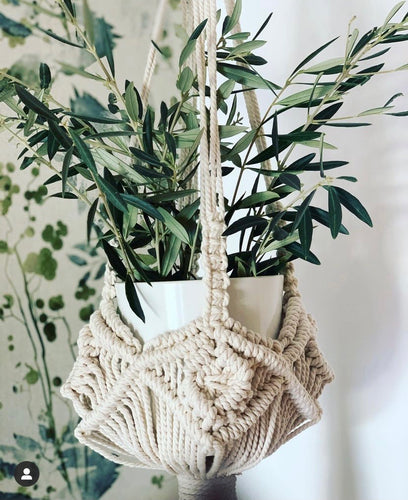 Workshop Planter and Macramé