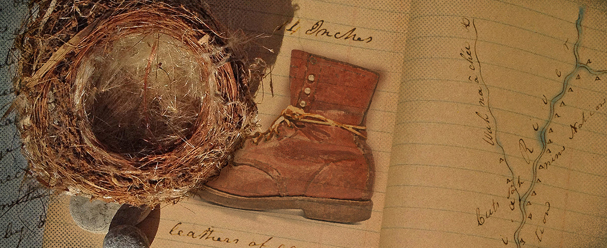 field guide, leather shoe, river, nest (artistic featured image)