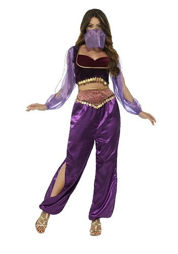 WOMEN'S PURPLE BELLY DANCER COSTUME