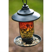 Load image into Gallery viewer, Glass And Metal Bird Feeder