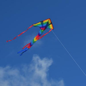 Kite - Rainbow Arrow Fly-Hi Kite