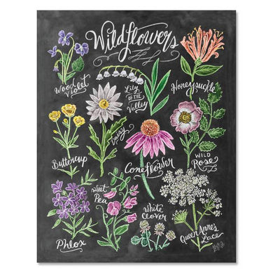 Wildflower Field Guide - Print & Canvas 11 X 14 Canvas
