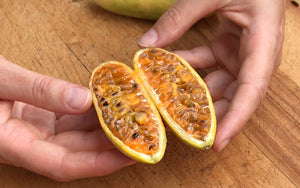 Inside Fierce Fruit: Introducing the Curuba (Banana Passion Fruit)