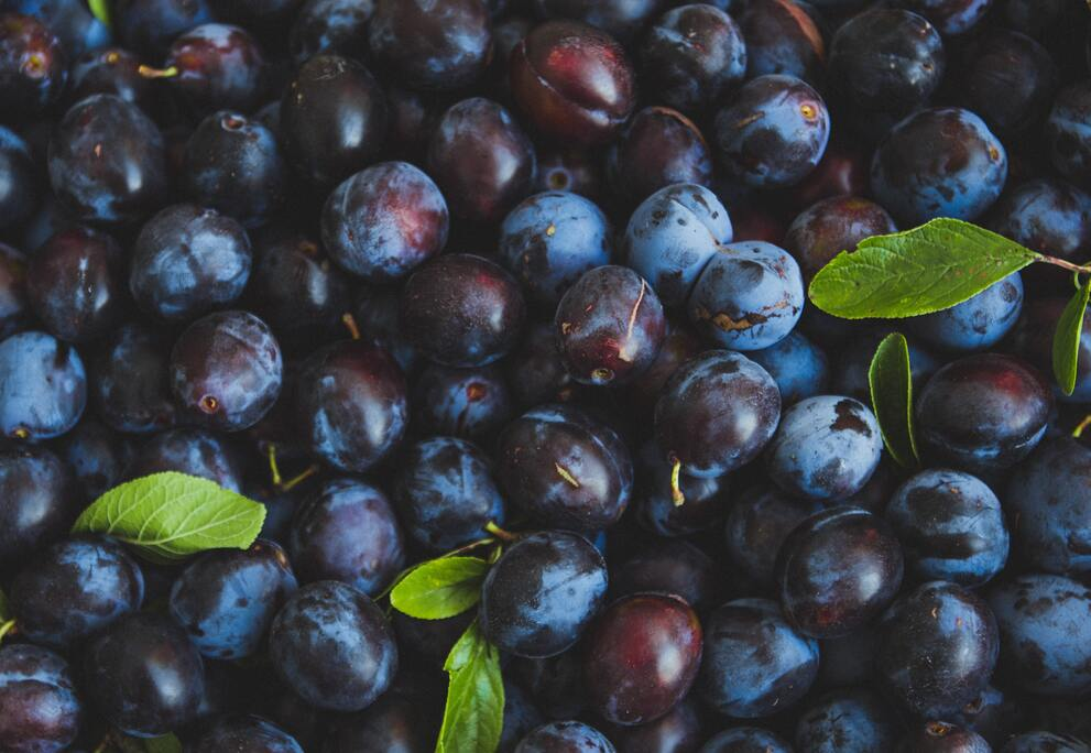 A pile of deep purple plums with leaves