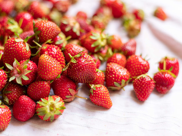 A pile of freshly-picked strawberries
