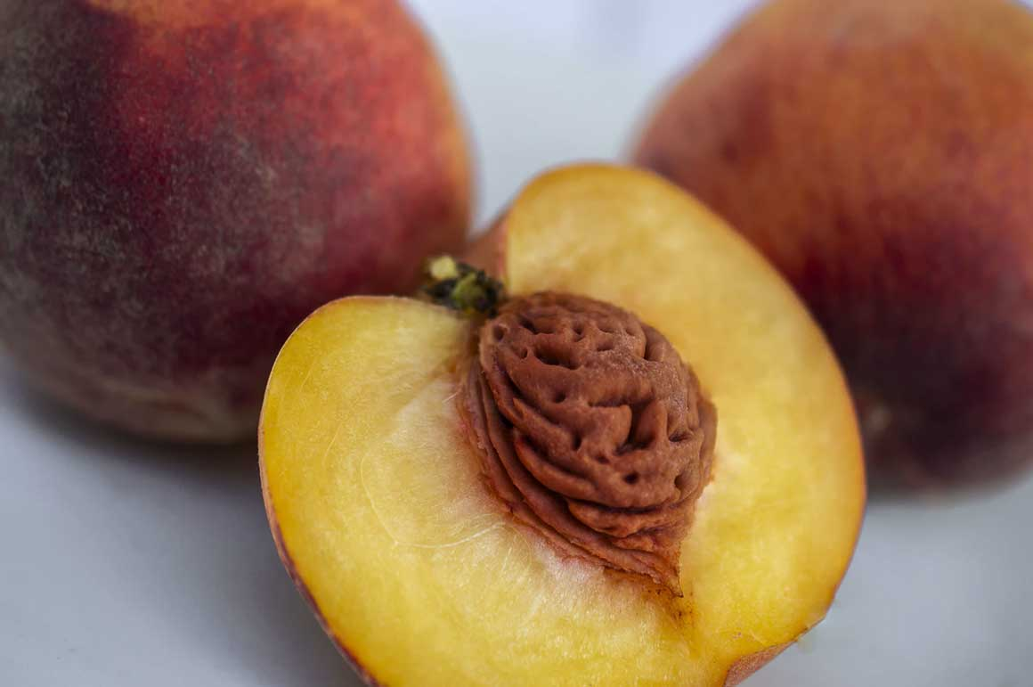 A peach cut open to expose its pit