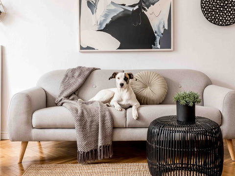 Matching Wall Art and Area Rug