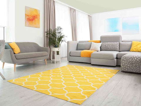 Warm color Area Rug in a living room