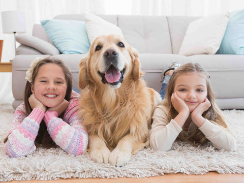 Two kids an a dog lying on an area rug