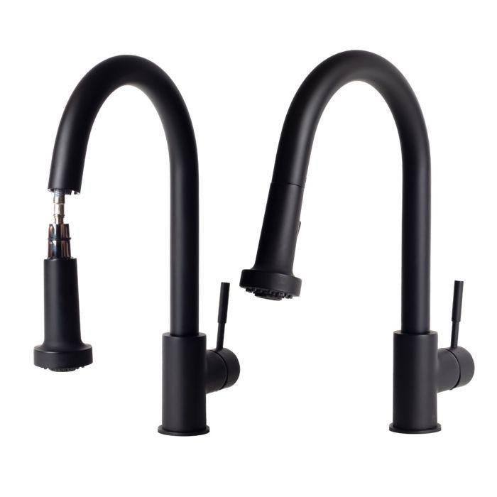 ZLINE Monet Kitchen Faucet FPNZ-MB-3