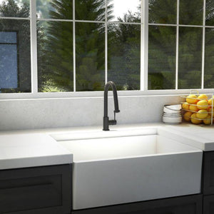 ZLINE Monet Kitchen Faucet FPNZ-MB-6 test