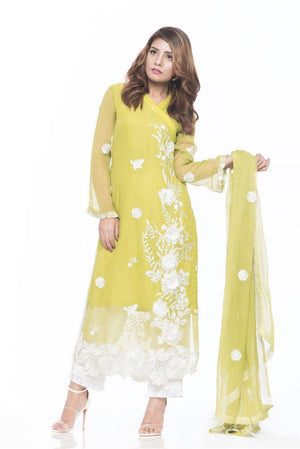 Desgner Women Clothing Online, pakistani dresses online boutique,