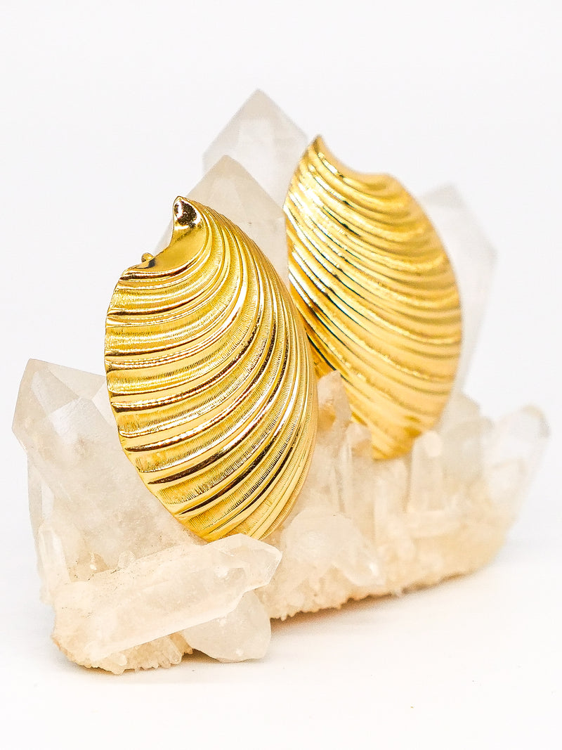 Christian Dior Stylized Shell Earrings