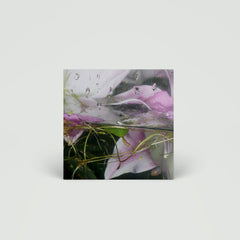 "Låpsley - These Elements - 12"" EP"