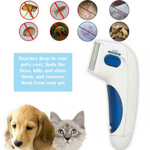 Flea Doctor (Free Shipping and Cash On Delivery Nationwide)