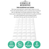 Giselle Bedding Super King Size Duck Down Quilt