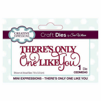 Sue Wilson Designs - Mini Expressions Collection - There's Only One Like You