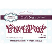 Sue Wilson Designs - Dies - Mini Expressions Collection - A Sweet Miracle (Ships April 17)