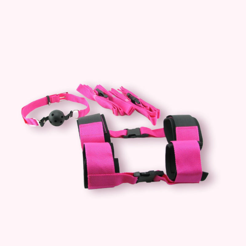 Fetish Fantasy Passion Bondage Kit Pink