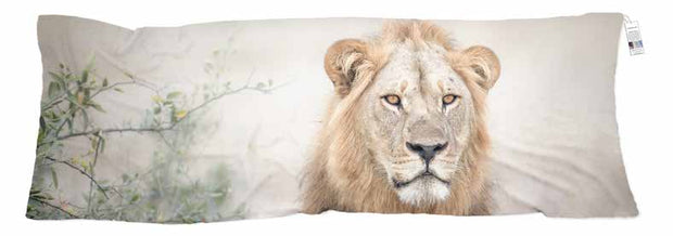 scarf showcasing the photo of a Lion taken by ALISTAIR MACDOUGALL