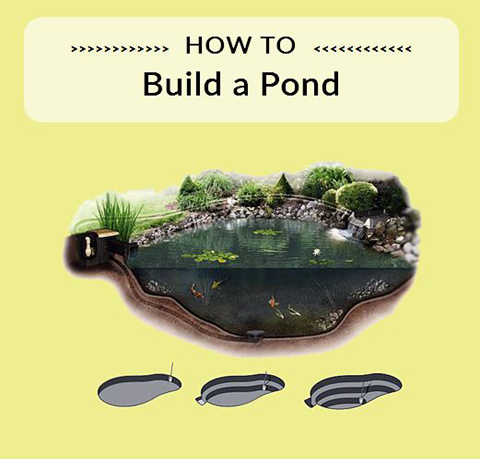 Koi Pond Step by Step - Marquis Gardens