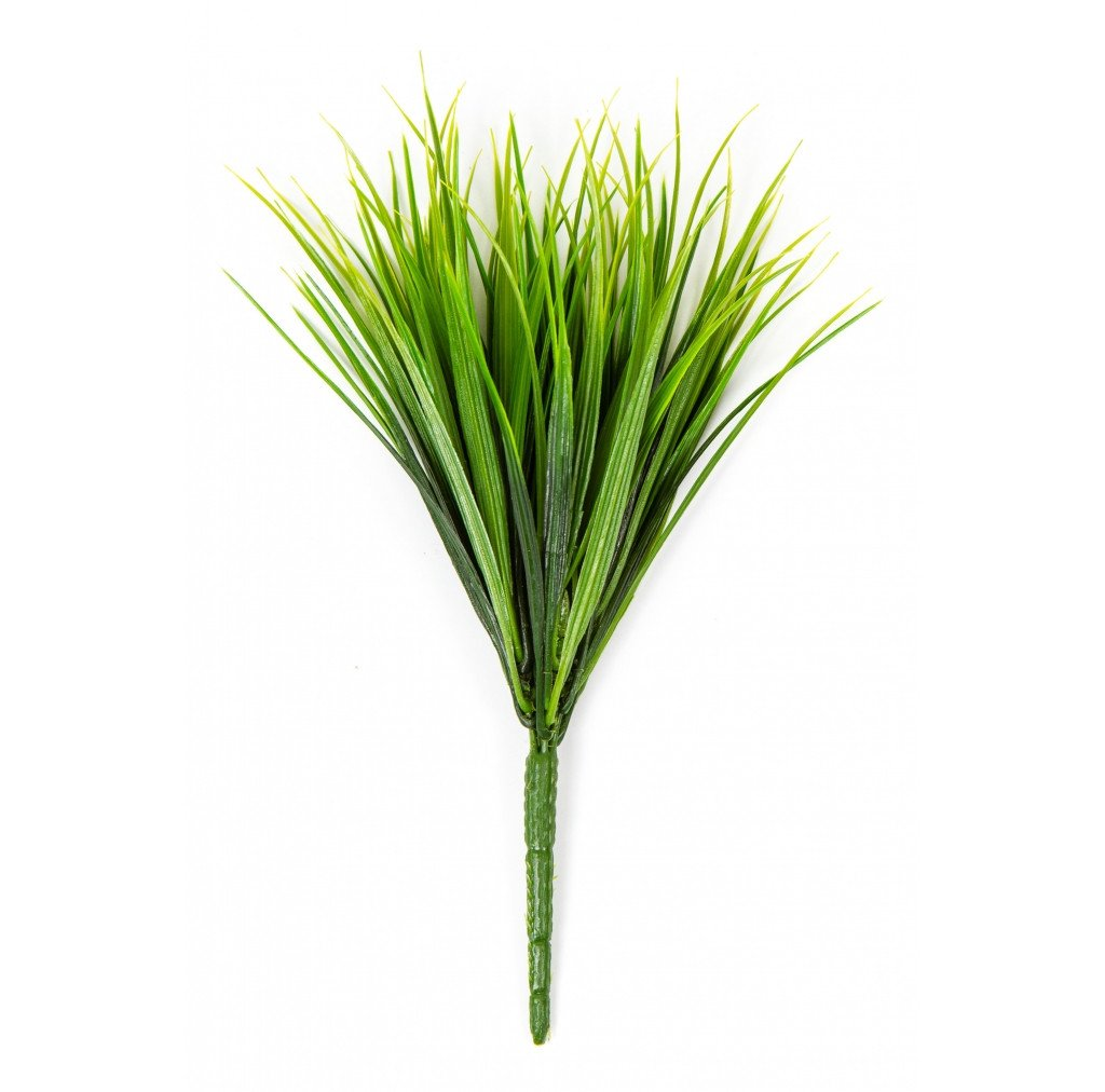 "Photo of Vanilla Grass Green, 12""  - Marquis Gardens"