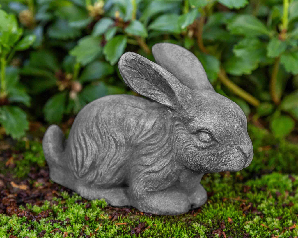 Photo of Bunny - Marquis Gardens