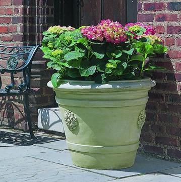 Photo of Campania Certosa Medallion Planter - Marquis Gardens