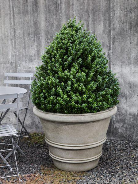Photo of Campania CLASSIC ROLLED RIM - Marquis Gardens