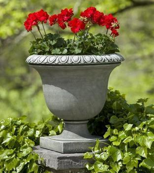 Photo of Campania Litchfield Egg & Dart Urn - Marquis Gardens