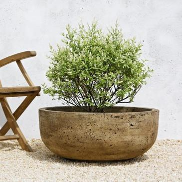 Photo of Campania Mesa Planter - Large - Marquis Gardens