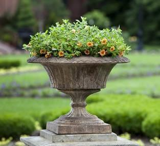 Photo of Campania Smithsonian Fluted Valentine Urn - Marquis Gardens